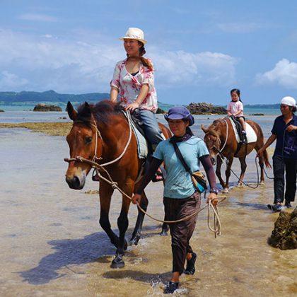 ビーチで引き馬体験