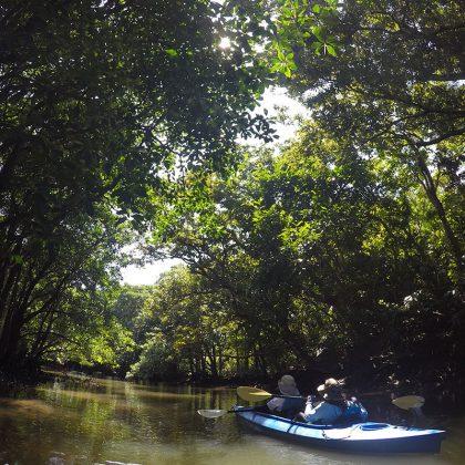 仲間川でカヌー