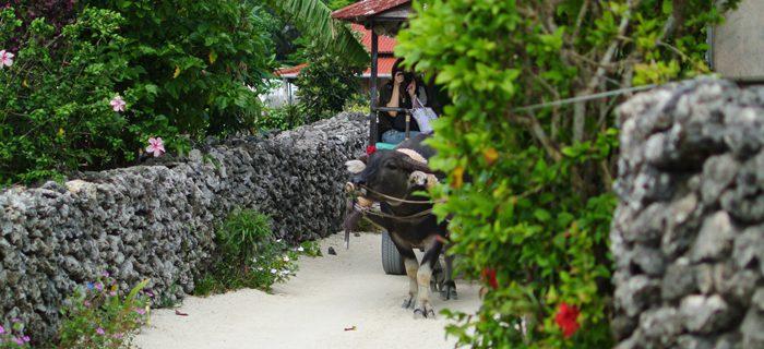 【離島パック】竹富島◆水牛車観光付プラン◆朝食付