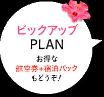 ピックアップPLAN お得な航空券+宿泊パックもどうぞ!
