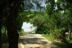 ゲストルームからビーチへ向かう途中には桟橋が見える