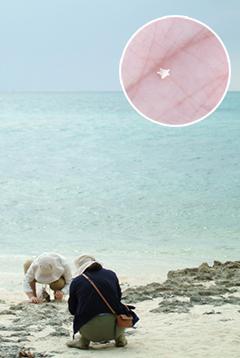 竹富島 カイジ浜 星の砂
