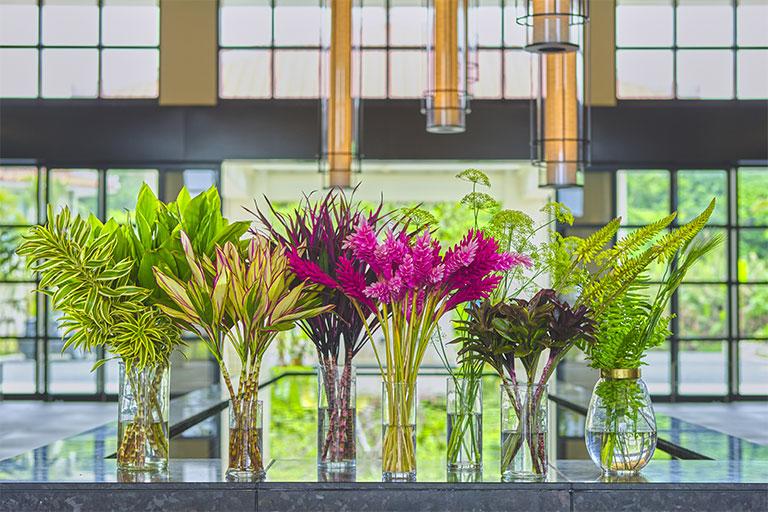 石垣島の鮮やかな植物